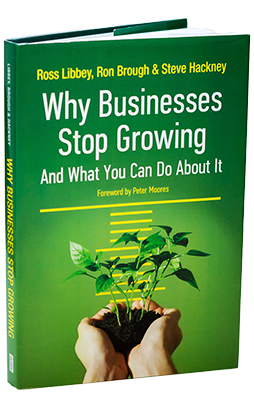 Why Businesses Stop Growing and what to do about it